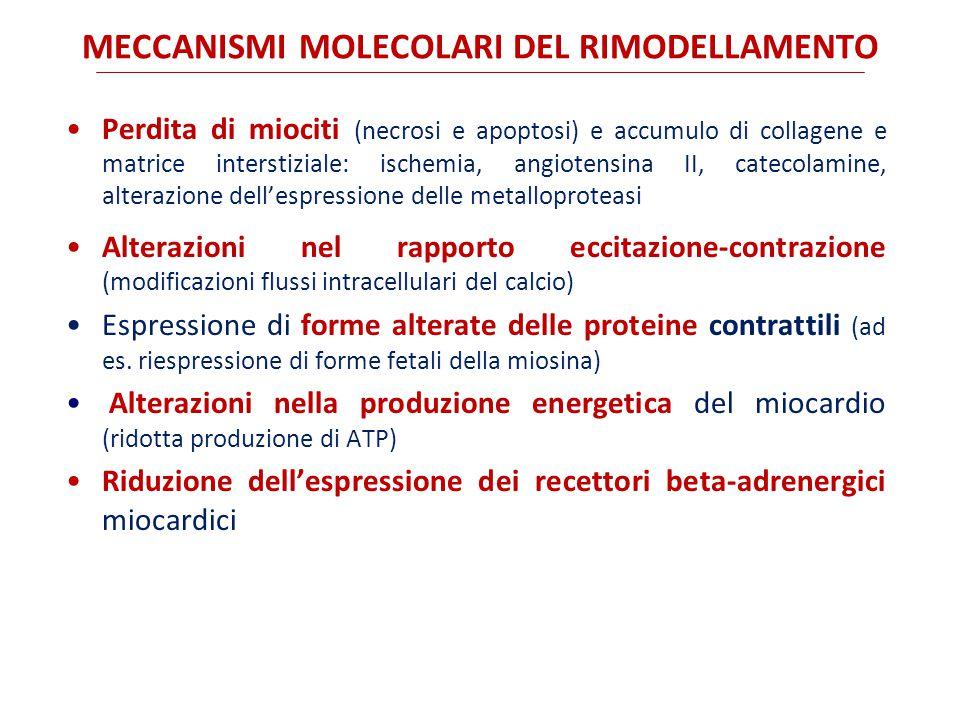 MECCANISMI MOLECOLARI DEL RIMODELLAMENTO Perdita di miociti (necrosi e apoptosi) e accumulo di collagene e matrice interstiziale: ischemia, angiotensina II, catecolamine, alterazione dell'espressione delle metalloproteasi Alterazioni nel rapporto eccitazione-contrazione (modificazioni flussi intracellulari del calcio) Espressione di forme alterate delle proteine contrattili (ad es.