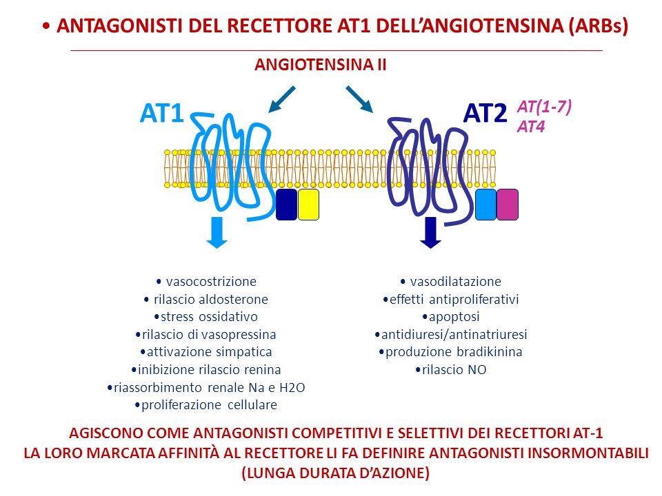 AT1AT2 ANGIOTENSINA II vasocostrizione rilascio aldosterone stress ossidativo rilascio di vasopressina attivazione simpatica inibizione rilascio renina riassorbimento renale Na e H2O proliferazione cellulare vasodilatazione effetti antiproliferativi apoptosi antidiuresi/antinatriuresi produzione bradikinina rilascio NO AGISCONO COME ANTAGONISTI COMPETITIVI E SELETTIVI DEI RECETTORI AT-1 LA LORO MARCATA AFFINITÀ AL RECETTORE LI FA DEFINIRE ANTAGONISTI INSORMONTABILI (LUNGA DURATA D'AZIONE) AT(1-7) AT4