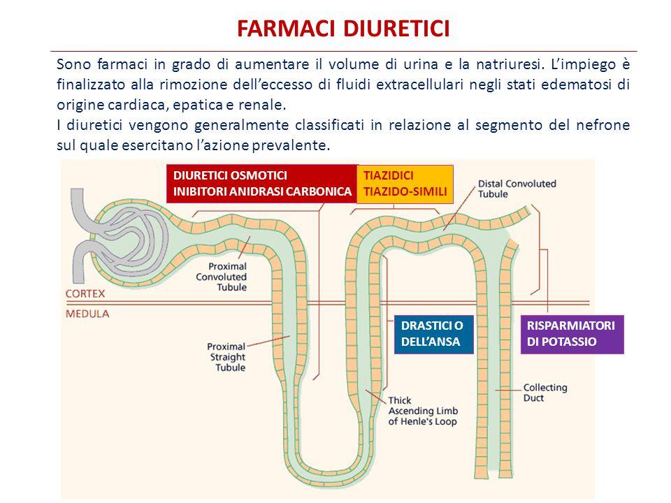 FARMACI DIURETICI Sono farmaci in grado di aumentare il volume di urina e la natriuresi.