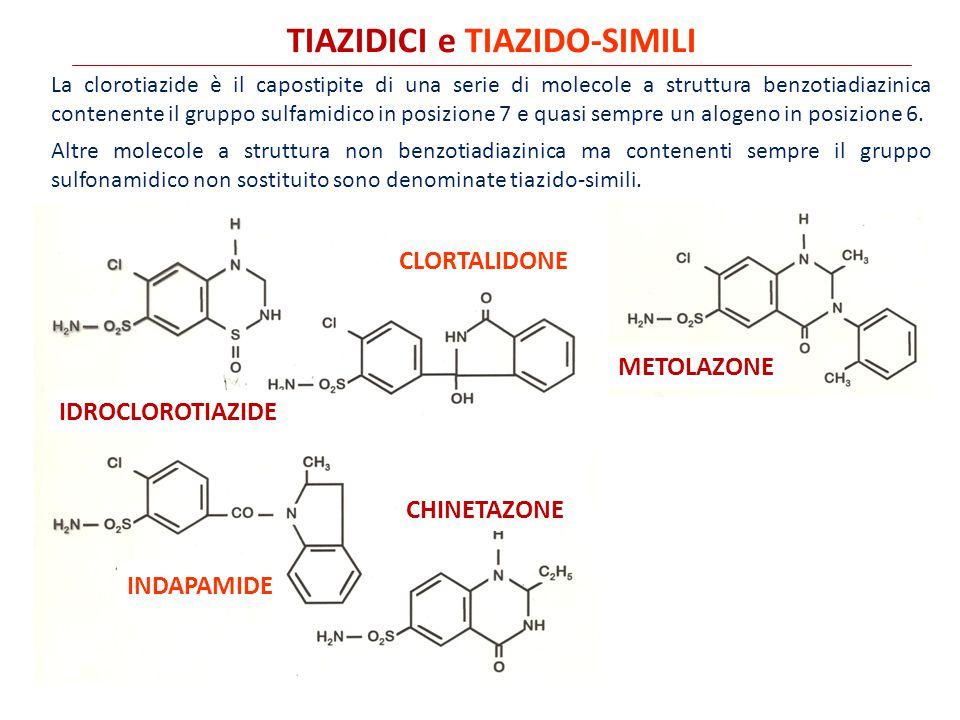 TIAZIDICI e TIAZIDO-SIMILI IDROCLOROTIAZIDE CLORTALIDONE METOLAZONE INDAPAMIDE CHINETAZONE La clorotiazide è il capostipite di una serie di molecole a struttura benzotiadiazinica contenente il gruppo sulfamidico in posizione 7 e quasi sempre un alogeno in posizione 6.
