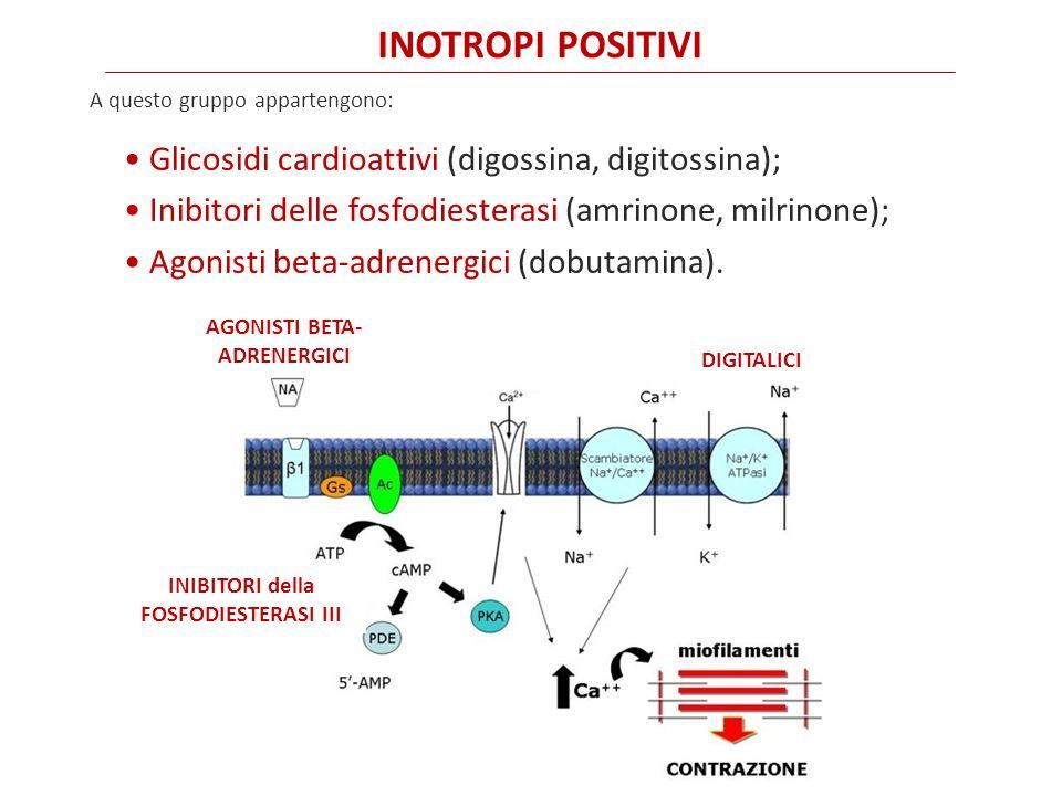 Glicosidi cardioattivi (digossina, digitossina); Inibitori delle fosfodiesterasi (amrinone, milrinone); Agonisti beta-adrenergici (dobutamina).