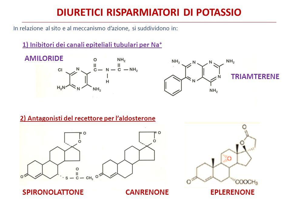 DIURETICI RISPARMIATORI DI POTASSIO In relazione al sito e al meccanismo d'azione, si suddividono in: 1) Inibitori dei canali epiteliali tubulari per Na + AMILORIDE TRIAMTERENE 2) Antagonisti del recettore per l'aldosterone EPLERENONESPIRONOLATTONECANRENONE