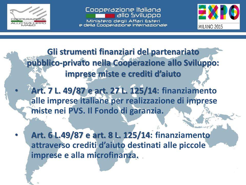 Gli strumenti finanziari del partenariato pubblico-privato nella Cooperazione allo Sviluppo: imprese miste e crediti d'aiuto Art.