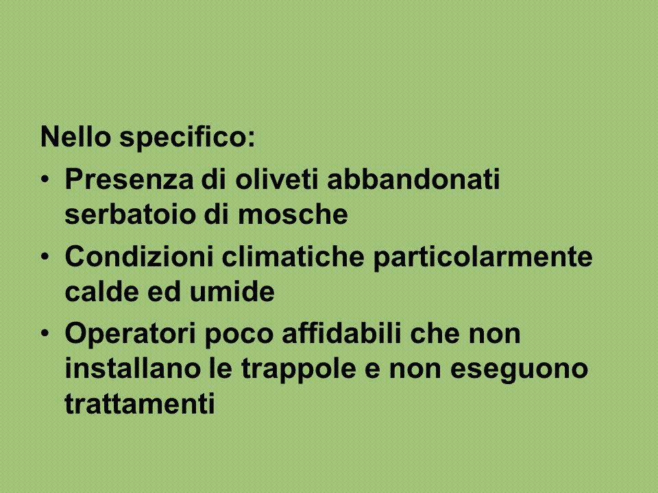 Nello specifico: Presenza di oliveti abbandonati serbatoio di mosche Condizioni climatiche particolarmente calde ed umide Operatori poco affidabili ch
