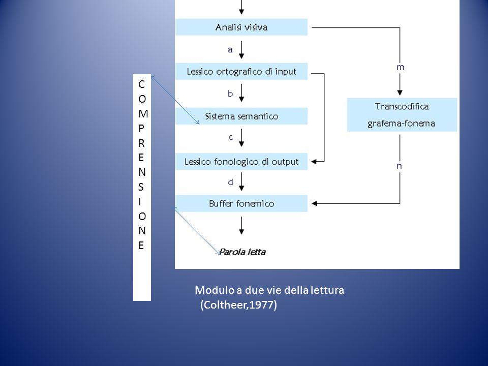 Modulo a due vie della lettura (Coltheer,1977) COMPRENSIONEDELCOMPRENSIONEDEL