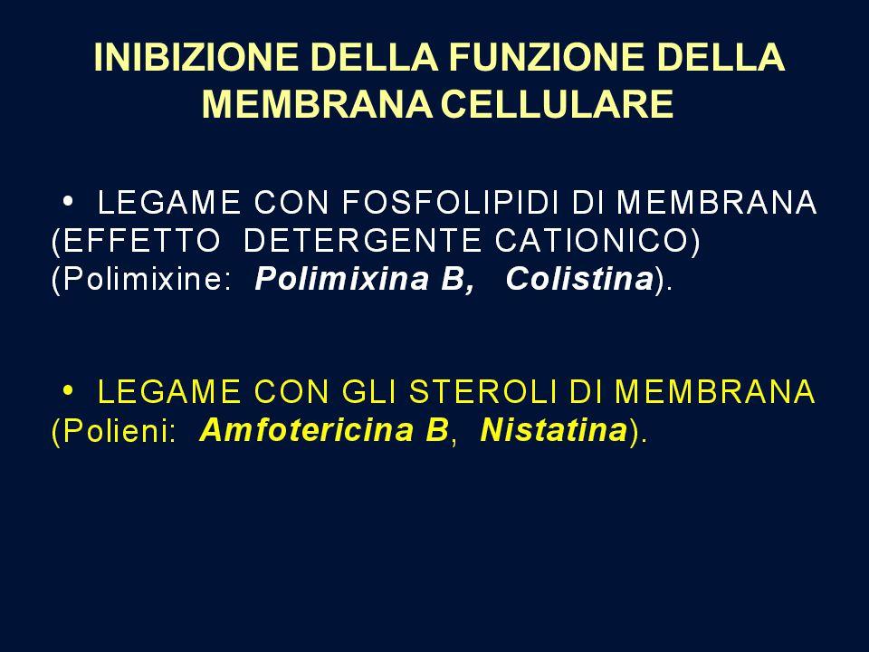 INIBIZIONE DELLA FUNZIONE DELLA MEMBRANA CELLULARE