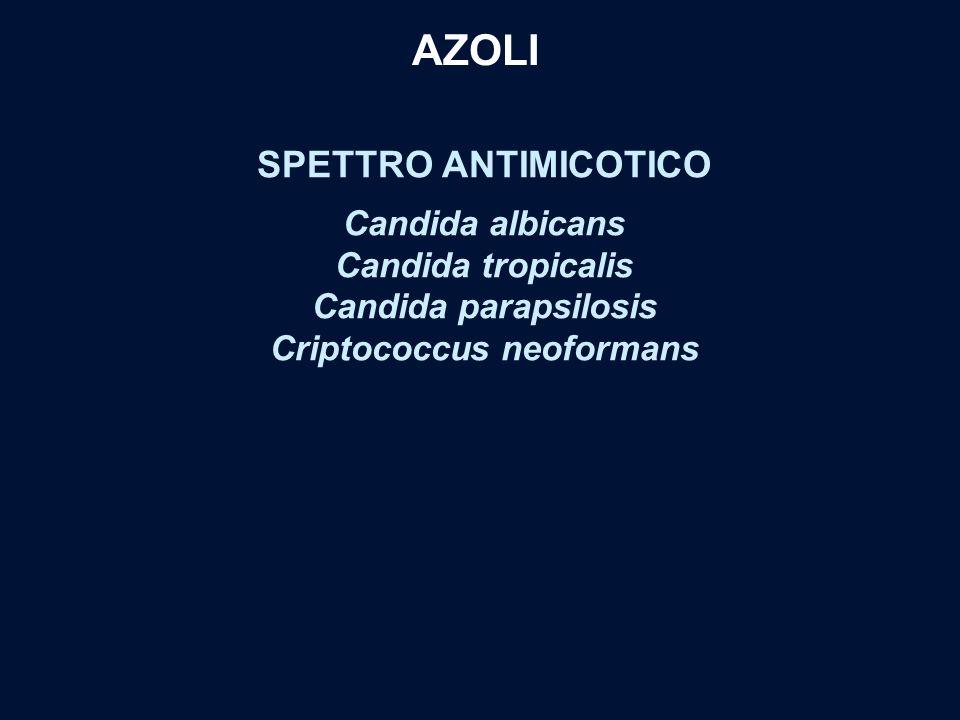 SPETTRO ANTIMICOTICO Candida albicans Candida tropicalis Candida parapsilosis Criptococcus neoformans AZOLI