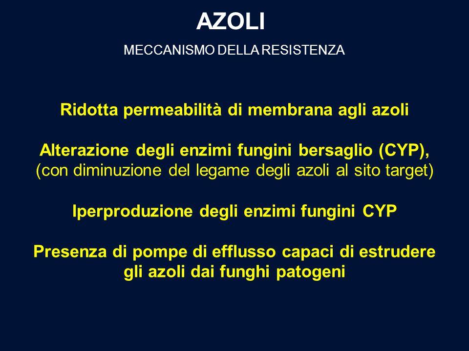 AZOLI MECCANISMO DELLA RESISTENZA Ridotta permeabilità di membrana agli azoli Alterazione degli enzimi fungini bersaglio (CYP), (con diminuzione del l