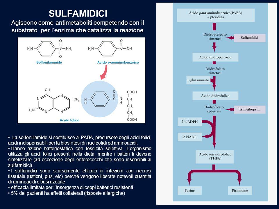 SULFAMIDICI Agiscono come antimetaboliti competendo con il substrato per l'enzima che catalizza la reazione La solfonillamide si sostituisce al PABA,