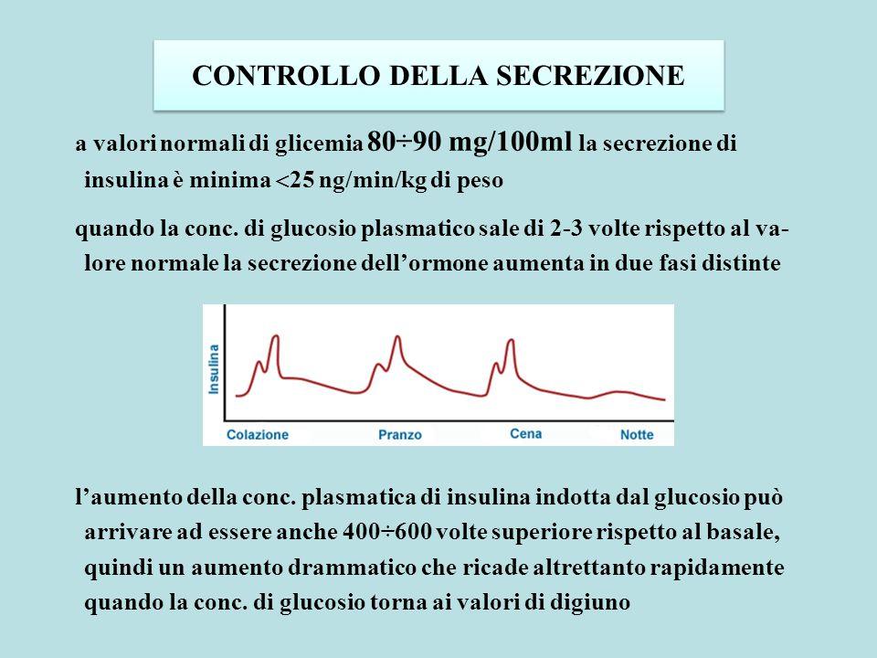 CONTROLLO DELLA SECREZIONE a valori normali di glicemia 80÷90 mg/100ml la secrezione di insulina è minima  25 ng/min/kg di peso quando la conc. di gl