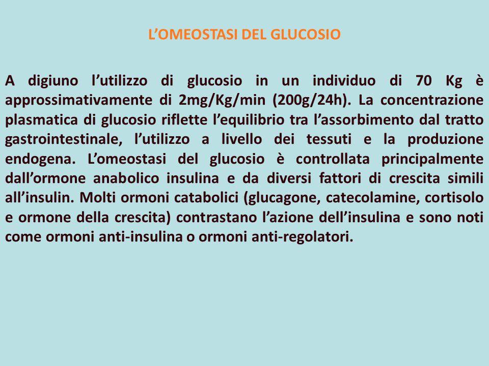 L'OMEOSTASI DEL GLUCOSIO A digiuno l'utilizzo di glucosio in un individuo di 70 Kg è approssimativamente di 2mg/Kg/min (200g/24h). La concentrazione p