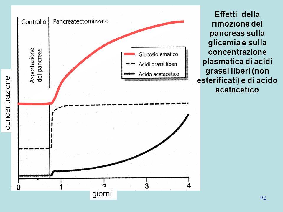 92 giorni concentrazione Effetti della rimozione del pancreas sulla glicemia e sulla concentrazione plasmatica di acidi grassi liberi (non esterificat