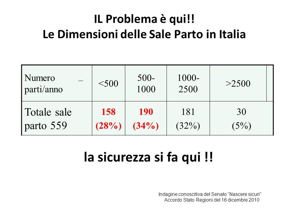 IL Problema è qui!! Le Dimensioni delle Sale Parto in Italia Numero parti/anno <500 500- 1000 1000- 2500 >2500 Totale sale parto 559 158 (28%) 190 (34