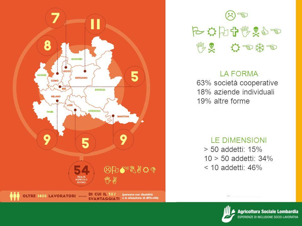    LA FORMA 63% società cooperative 18% aziende individuali 19% altre forme LE DIMENSIONI > 50 addetti: 15% 10 > 50 addetti: 34% < 10 addetti: 46%  