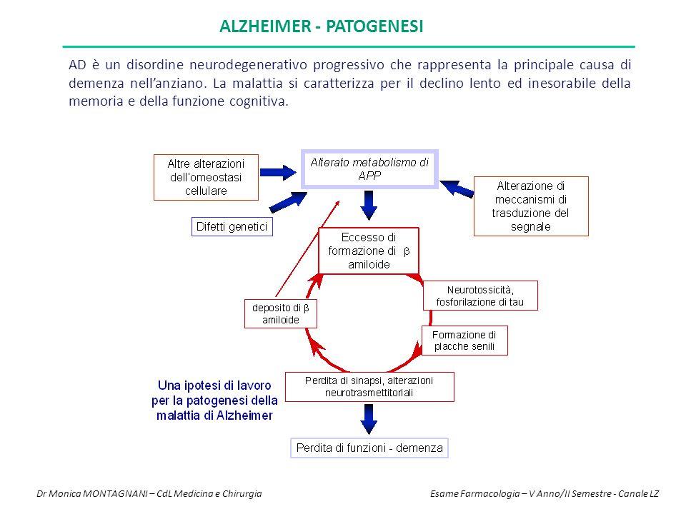 ALZHEIMER - PATOGENESI AD è un disordine neurodegenerativo progressivo che rappresenta la principale causa di demenza nell'anziano. La malattia si car