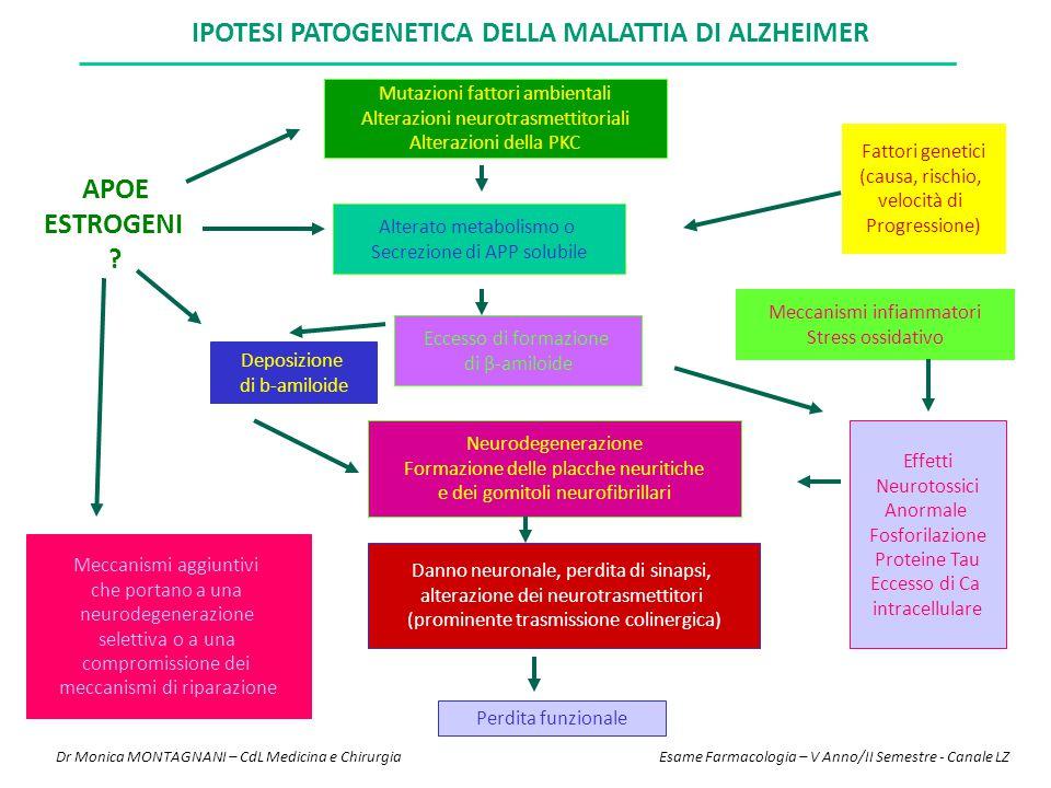 IPOTESI PATOGENETICA DELLA MALATTIA DI ALZHEIMER APOE ESTROGENI ? Deposizione di b-amiloide Meccanismi aggiuntivi che portano a una neurodegenerazione