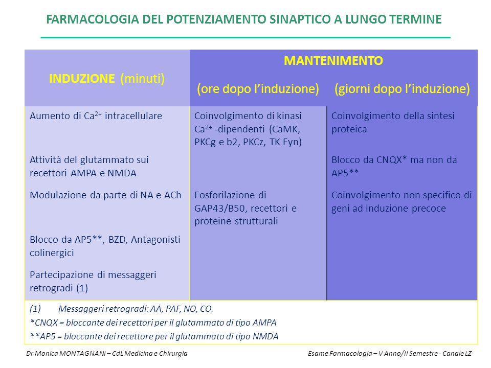 INDUZIONE (minuti) MANTENIMENTO (ore dopo l'induzione)(giorni dopo l'induzione) Aumento di Ca 2+ intracellulareCoinvolgimento di kinasi Ca 2+ -dipende
