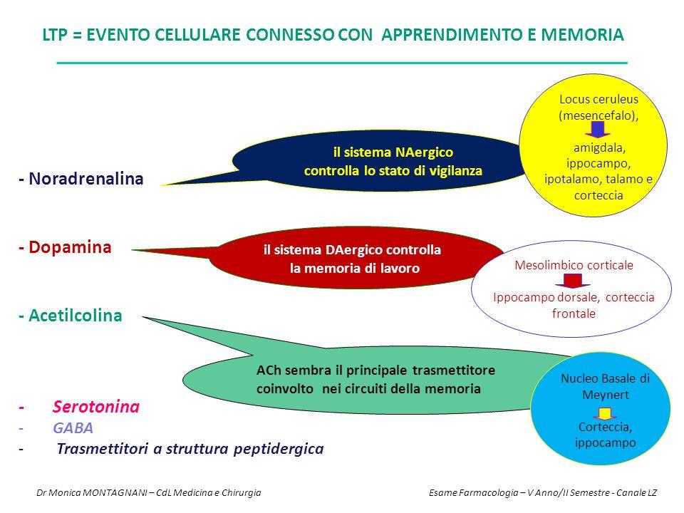 - Noradrenalina - Dopamina - Acetilcolina - Serotonina -GABA - Trasmettitori a struttura peptidergica LTP = EVENTO CELLULARE CONNESSO CON APPRENDIMENT
