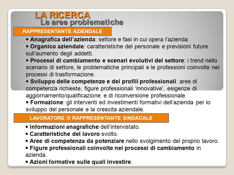 LA RICERCA Le aree problematiche RAPPRESENTANTE AZIENDALE  Anagrafica dell'azienda: settore e fasi in cui opera l'azienda.  Organico aziendale: cara