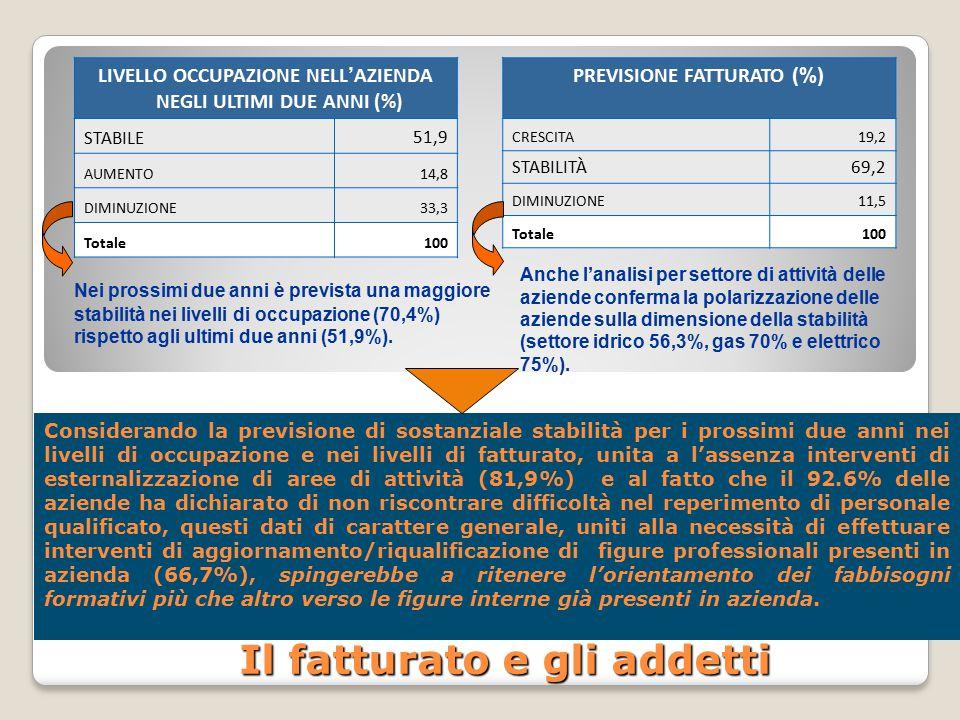 Il fatturato e gli addetti LIVELLO OCCUPAZIONE NELL ' AZIENDA NEGLI ULTIMI DUE ANNI (%) STABILE51,9 AUMENTO14,8 DIMINUZIONE33,3 Totale100 Nei prossimi