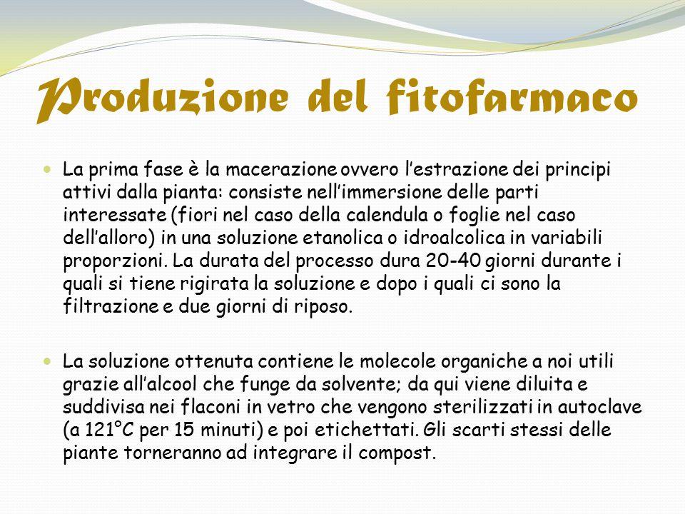 Produzione del fitofarmaco La prima fase è la macerazione ovvero l'estrazione dei principi attivi dalla pianta: consiste nell'immersione delle parti i
