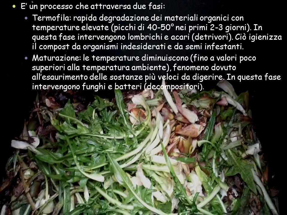 E' un processo che attraversa due fasi: Termofila: rapida degradazione dei materiali organici con temperature elevate (picchi di 40-50° nei primi 2-3
