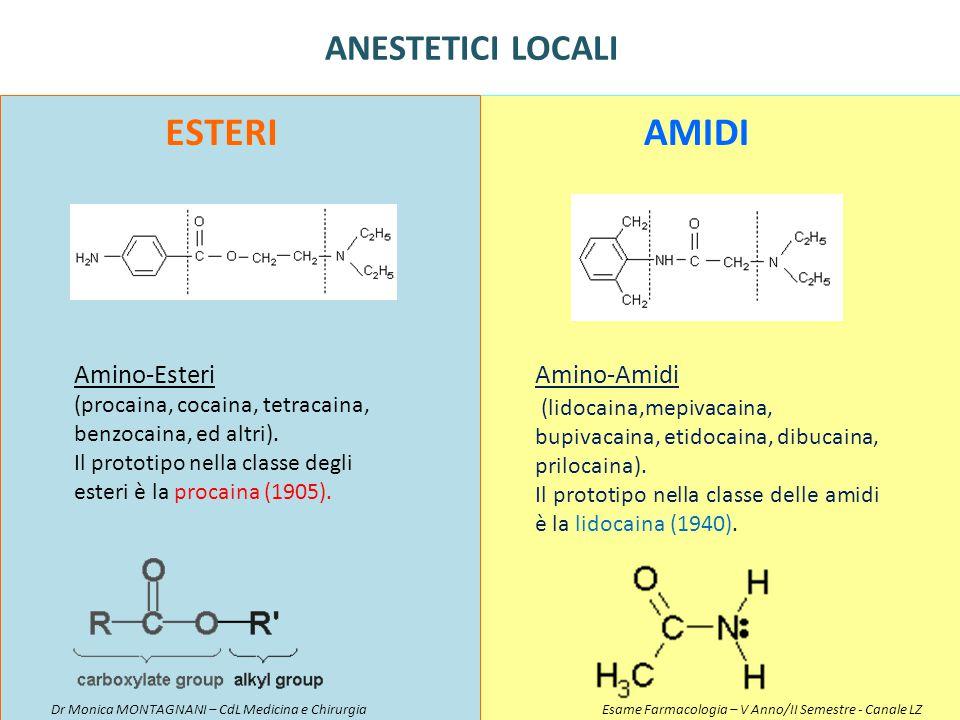 Amino-Esteri (procaina, cocaina, tetracaina, benzocaina, ed altri). Il prototipo nella classe degli esteri è la procaina (1905). Amino-Amidi (lidocain