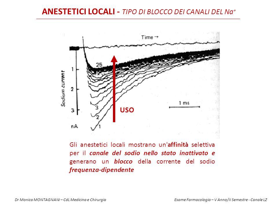 USO ANESTETICI LOCALI - TIPO DI BLOCCO DEI CANALI DEL Na + Gli anestetici locali mostrano un'affinità selettiva per il canale del sodio nello stato in