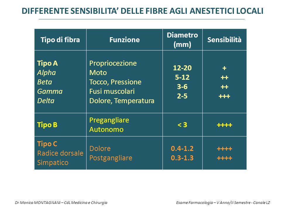 Tipo di fibraFunzione Diametro (mm) Sensibilità Tipo A Alpha Beta Gamma Delta Propriocezione Moto Tocco, Pressione Fusi muscolari Dolore, Temperatura