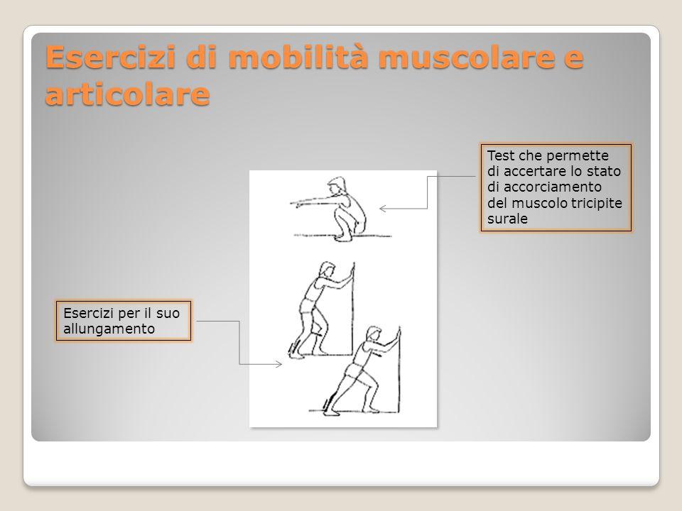 Esercizi di mobilità muscolare e articolare Test che permette di accertare lo stato di accorciamento del muscolo tricipite surale Esercizi per il suo