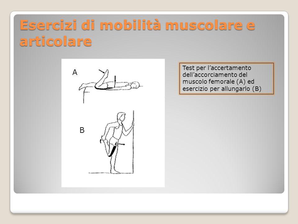 Esercizi di mobilità muscolare e articolare A B Test per l'accertamento dell'accorciamento del muscolo femorale (A) ed esercizio per allungarlo (B)