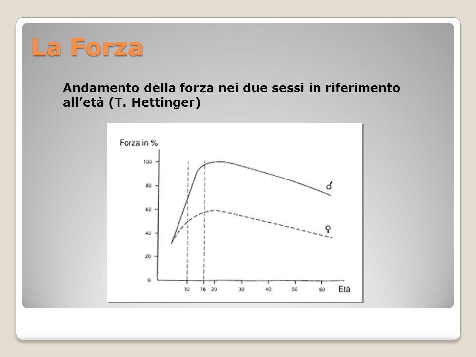 La Forza Andamento della forza nei due sessi in riferimento all'età (T. Hettinger)