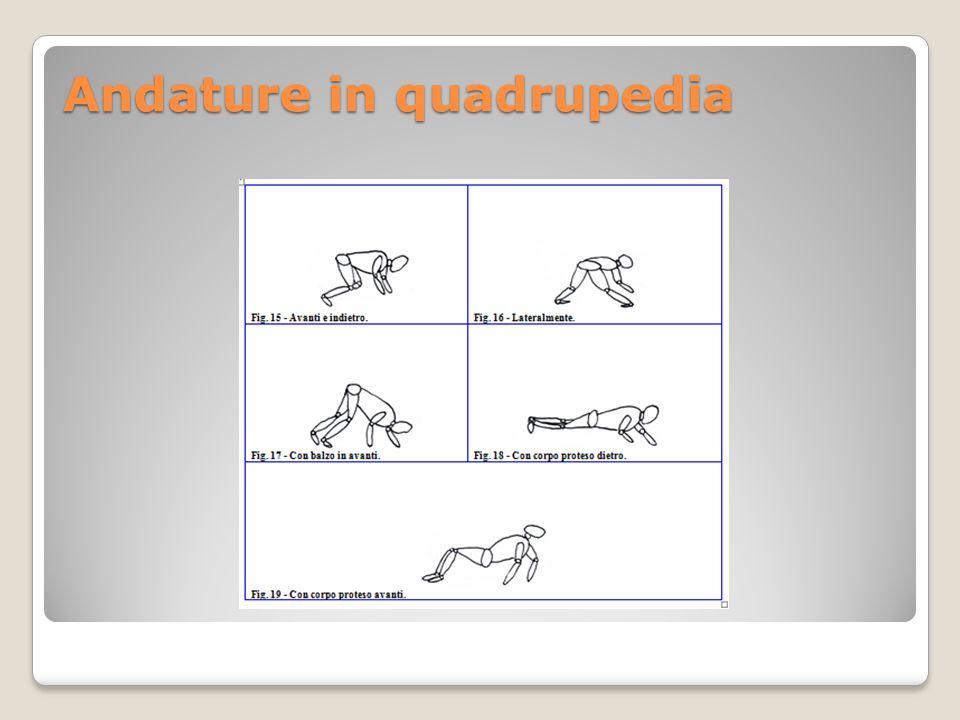 Andature in quadrupedia