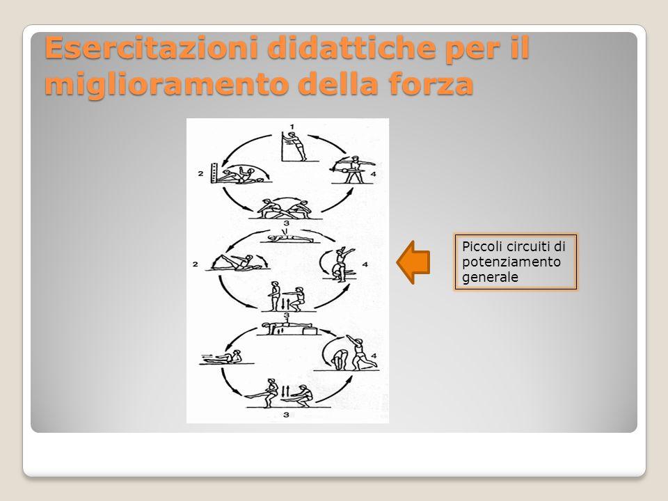Esercitazioni didattiche per il miglioramento della forza Piccoli circuiti di potenziamento generale