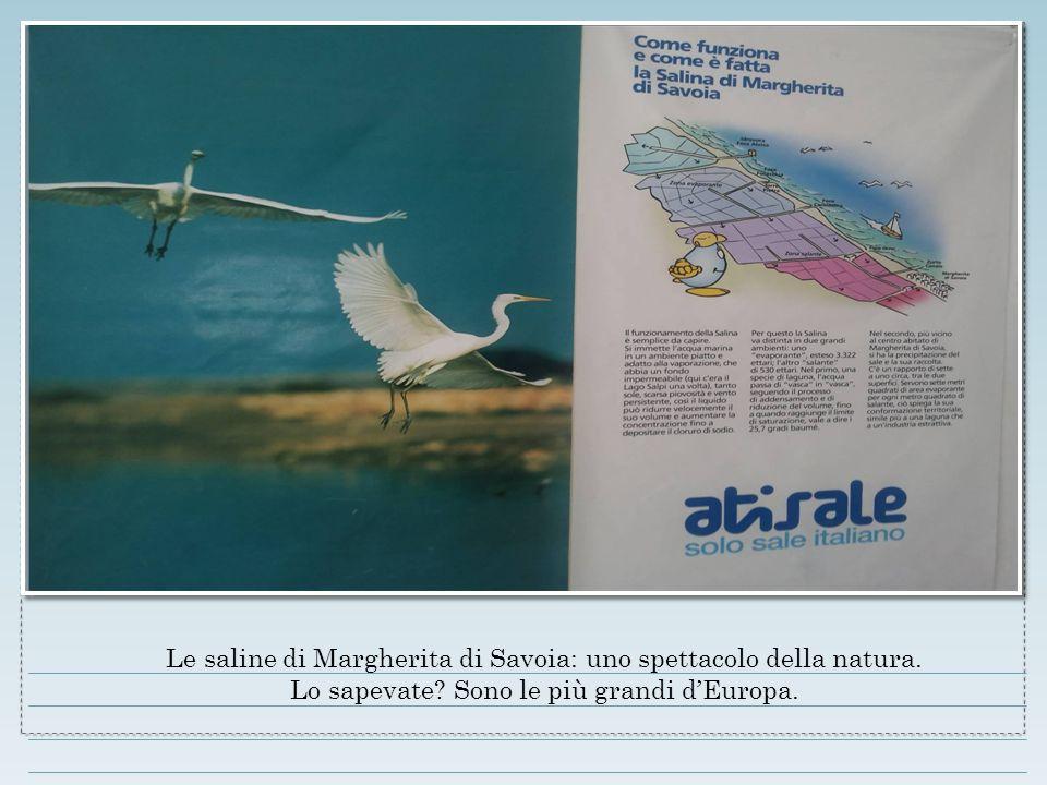 Le saline di Margherita di Savoia: uno spettacolo della natura. Lo sapevate? Sono le più grandi d'Europa.