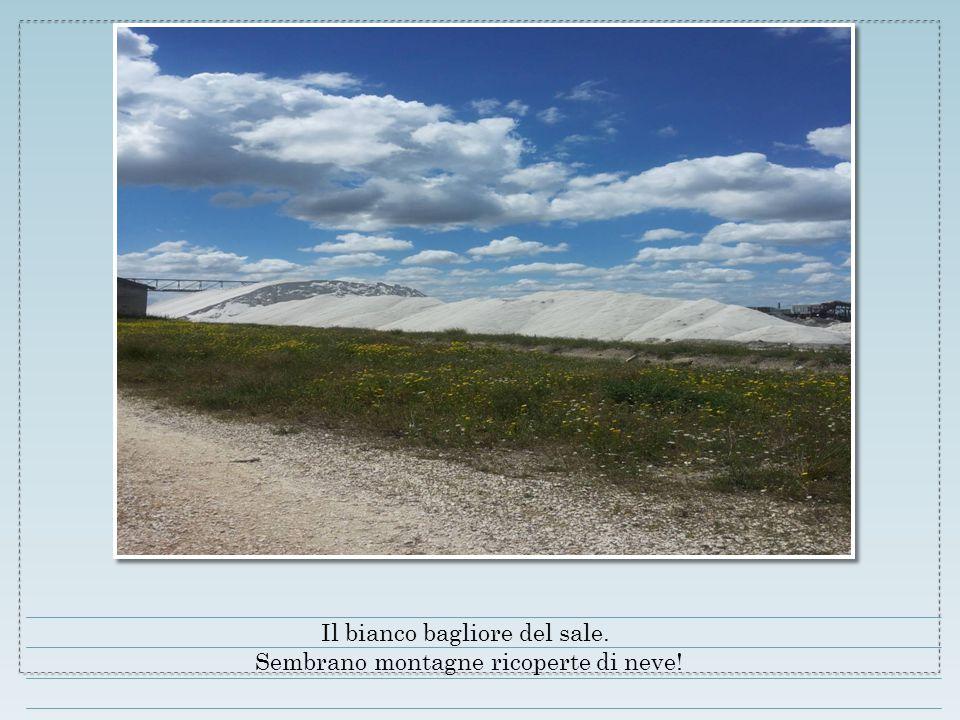 Il bianco bagliore del sale. Sembrano montagne ricoperte di neve!