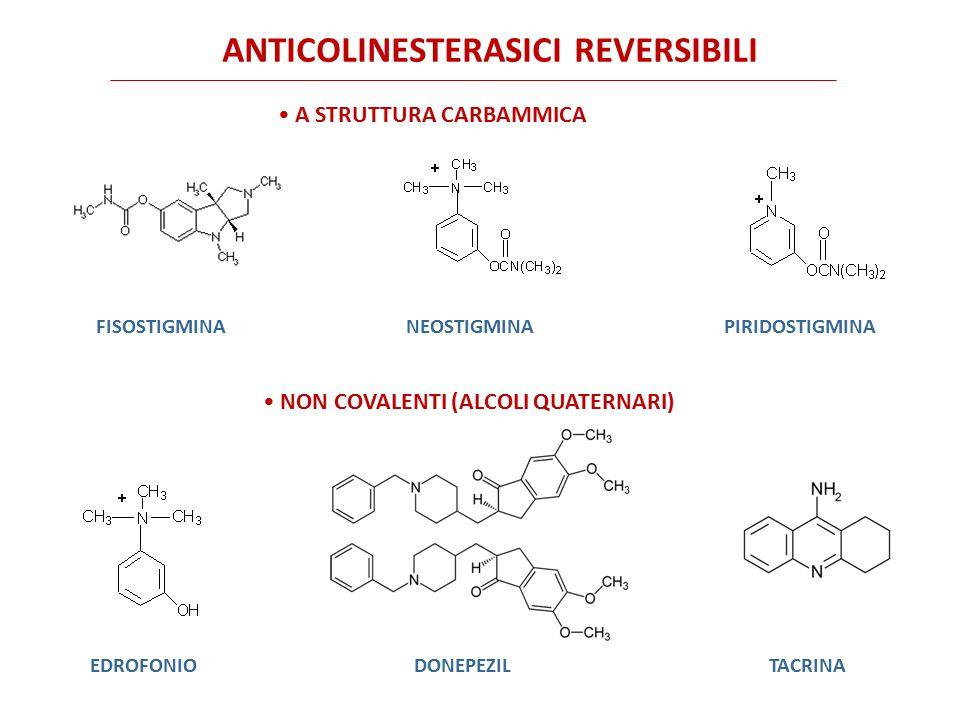 Anticolinesterasico reversibile Enzima attivo L'idrolisi del legame tra la serina enzimatica e il gruppo carbamilico del farmaco è tuttavia più lenta (minuti) rispetto alla idrolisi spontanea (microsecondi) dell'enzima acetilato.