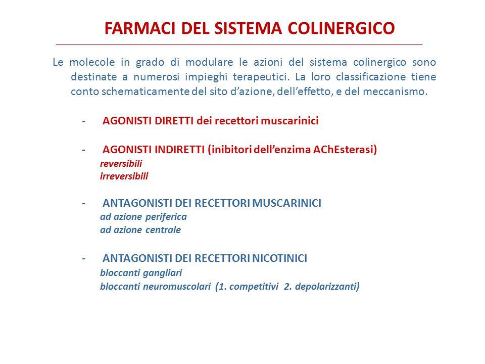 Atropa belladonna Hyoscamus niger ATROPINAIOSCINASCOPOLAMINA N O O OH N O O H Datura stramonium ANTAGONISTI MUSCARINICI