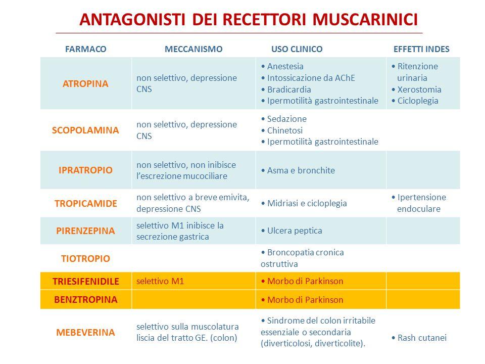 Gli antimuscarinici che vengono usati per gli spasmi della muscolatura gastrointestinale includono le amine terziarie atropina solfato e dicicloverina cloridrato e i composti di ammonio quaternario propantelina bromuro e scopolamina butilbromuro.