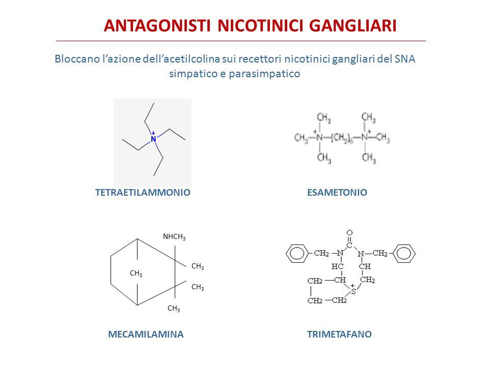 Assorbimento per os difficoltoso, incompleto e imprevedibile per i composti ammonici quaternari e solfonici.