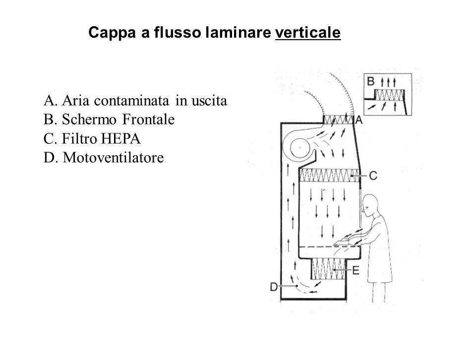 Cappa a flusso laminare verticale A. Aria contaminata in uscita B. Schermo Frontale C. Filtro HEPA D. Motoventilatore
