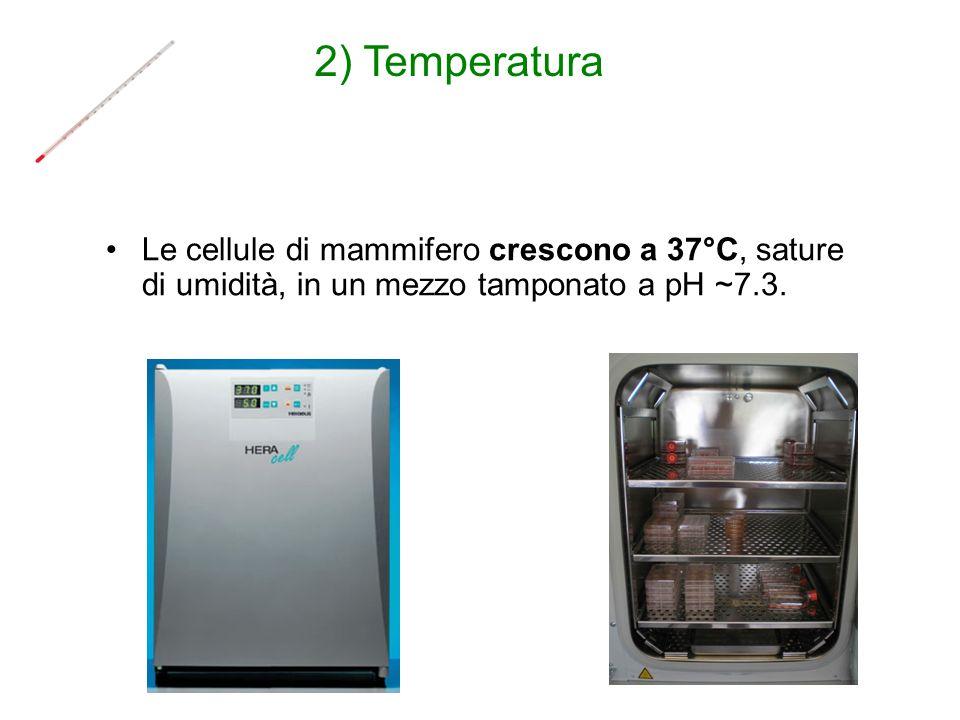 Le cellule di mammifero crescono a 37°C, sature di umidità, in un mezzo tamponato a pH ~7.3. 2) Temperatura