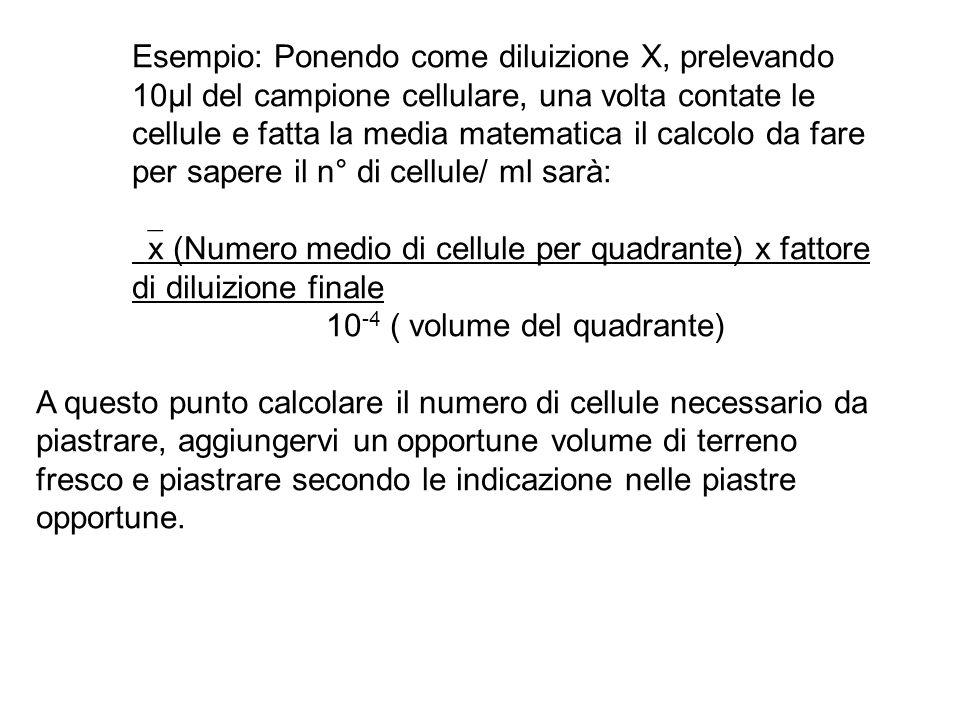 Esempio: Ponendo come diluizione X, prelevando 10µl del campione cellulare, una volta contate le cellule e fatta la media matematica il calcolo da far