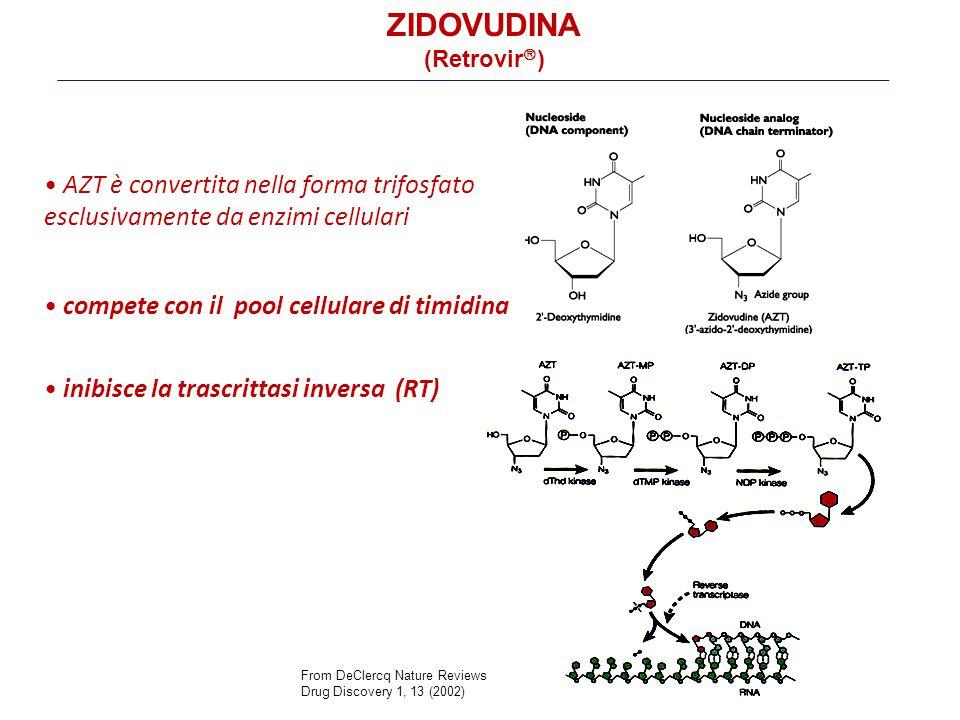 inibisce la trascrittasi inversa (RT) AZT è convertita nella forma trifosfato esclusivamente da enzimi cellulari From DeClercq Nature Reviews Drug Discovery 1, 13 (2002) compete con il pool cellulare di timidina ZIDOVUDINA (Retrovir  )