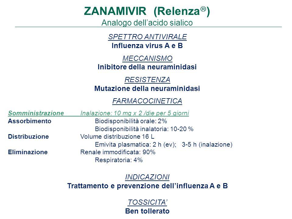 ZANAMIVIR (Relenza  ) Analogo dell'acido sialico SPETTRO ANTIVIRALE Influenza virus A e B MECCANISMO Inibitore della neuraminidasi RESISTENZA Mutazione della neuraminidasi FARMACOCINETICA SomministrazioneInalazione: 10 mg x 2 /die per 5 giorni AssorbimentoBiodisponibilità orale: 2% Biodisponibilità inalatoria: 10-20 % DistribuzioneVolume distribuzione 16 L Emivita plasmatica: 2 h (ev); 3-5 h (inalazione) Eliminazione Renale immodificata: 90% Respiratoria: 4% INDICAZIONI Trattamento e prevenzione dell'influenza A e B TOSSICITA' Ben tollerato