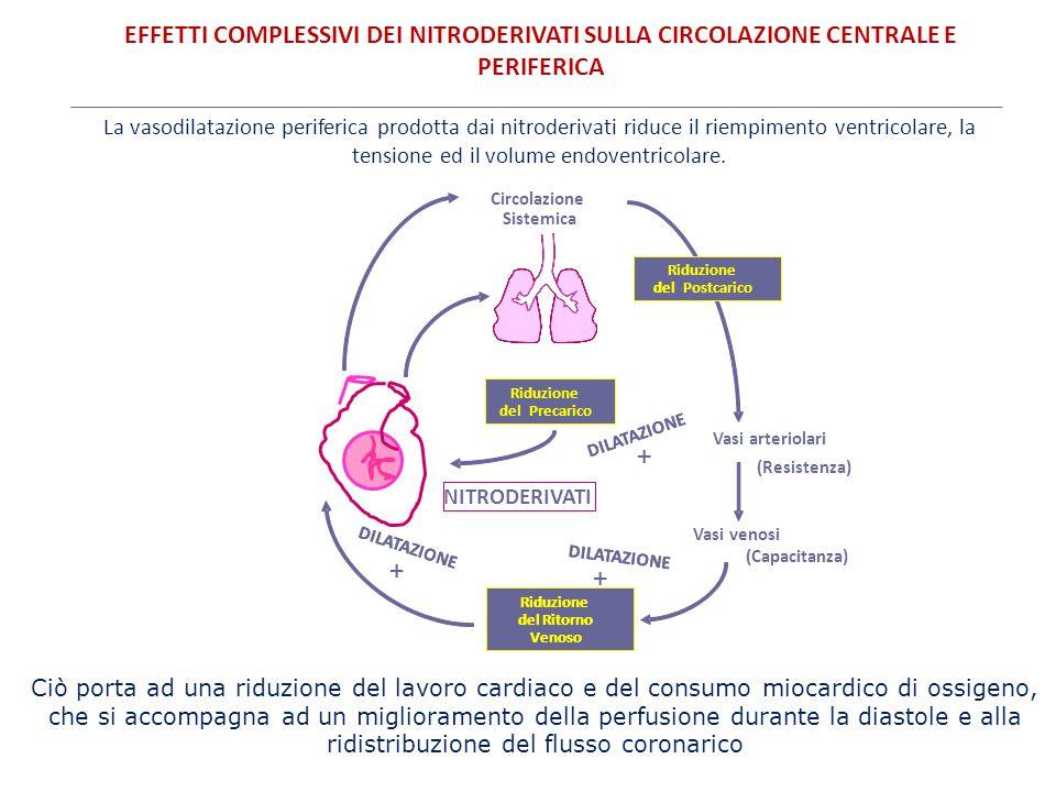 EFFETTI COMPLESSIVI DEI NITRODERIVATI SULLA CIRCOLAZIONE CENTRALE E PERIFERICA Riduzione delPrecarico Riduzione del Ritorno Venoso Vasi arteriolari (R