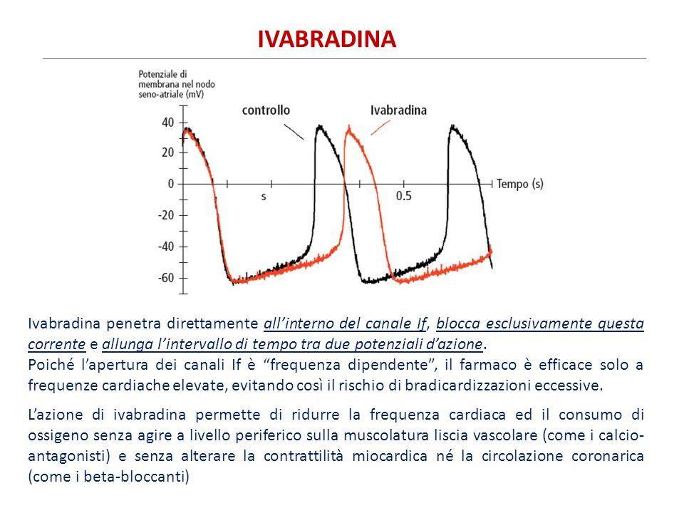 Ivabradina penetra direttamente all'interno del canale If, blocca esclusivamente questa corrente e allunga l'intervallo di tempo tra due potenziali d'
