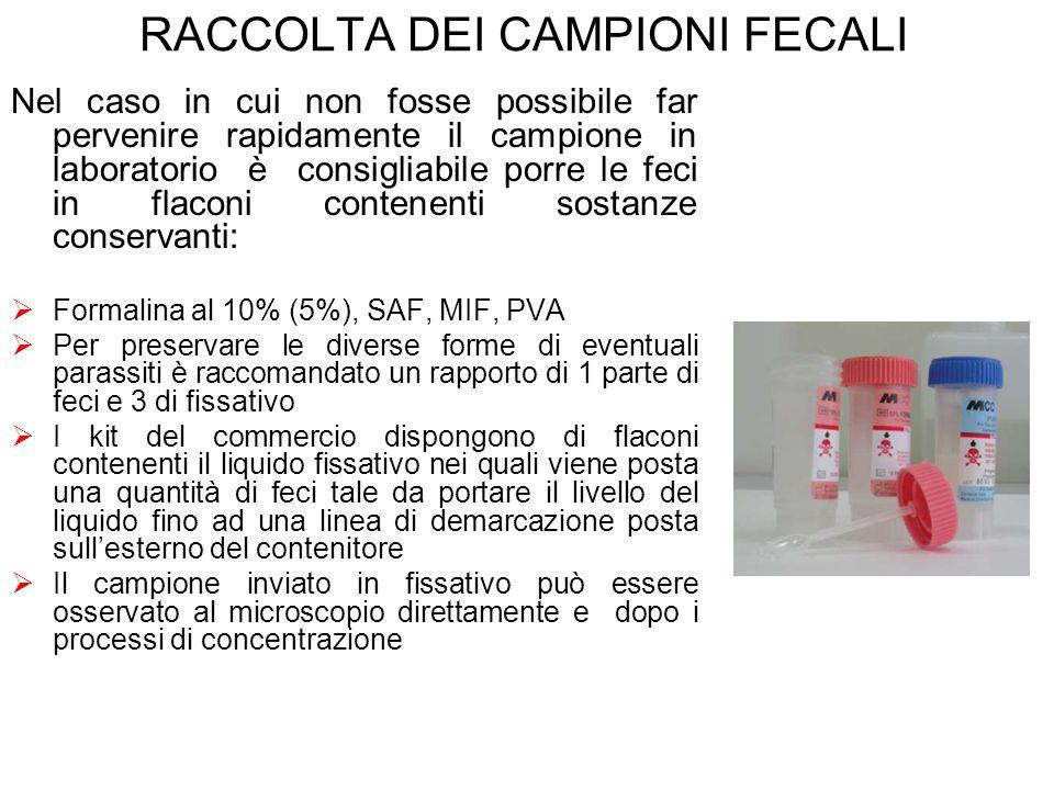 RACCOLTA DEI CAMPIONI FECALI Nel caso in cui non fosse possibile far pervenire rapidamente il campione in laboratorio è consigliabile porre le feci in