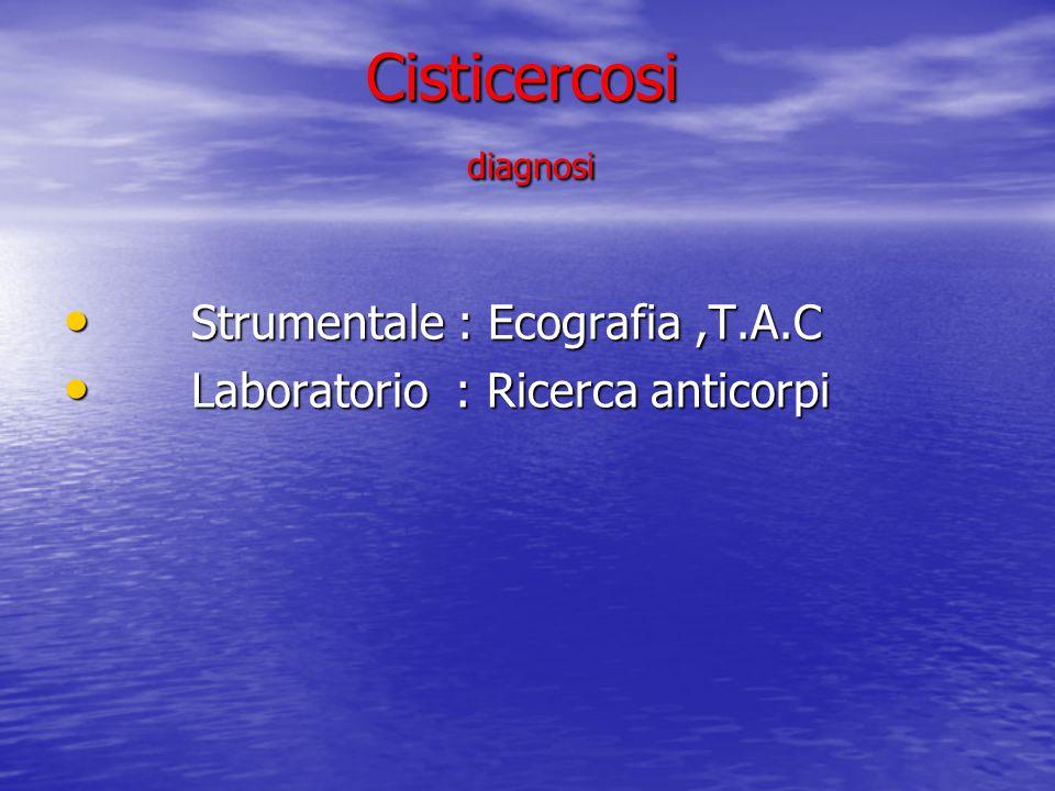 Cisticercosi diagnosi Cisticercosi diagnosi Strumentale : Ecografia,T.A.C Strumentale : Ecografia,T.A.C Laboratorio : Ricerca anticorpi Laboratorio :