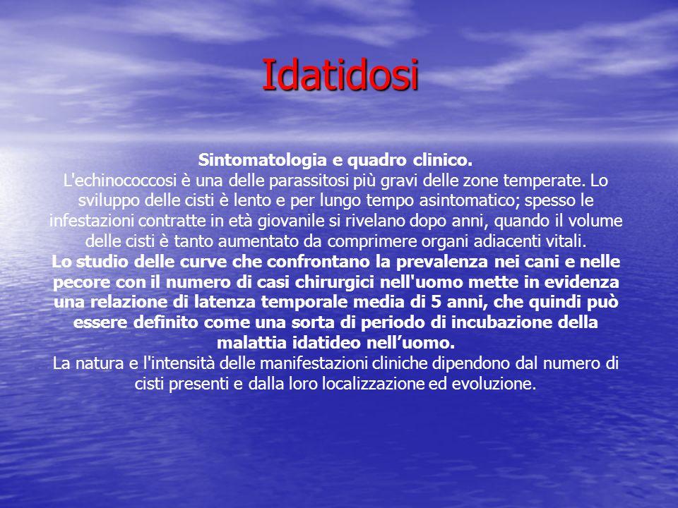 Idatidosi Idatidosi Sintomatologia e quadro clinico. L'echinococcosi è una delle parassitosi più gravi delle zone temperate. Lo sviluppo delle cisti è